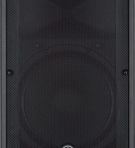 DBR15 1000 WATT POWERED SPEAKER 15 INCH